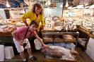 fish-market_15