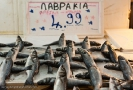 fish-market_8