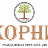 Гражданская организация «Корни»