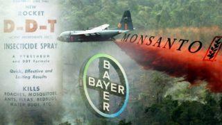 Как Bayer покрывает «грехи» Monsanto