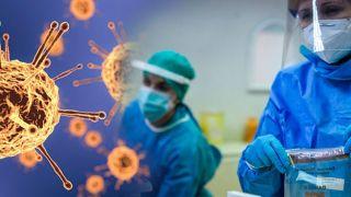 Коронавирус: 101 смерть, 562 интубированных, 2135 новых случаев