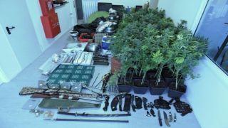 Афинская полиция обнаружила в доме гидропонную ферму по выращиванию каннабиса