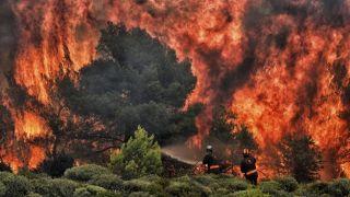 Следователи: На 99% пожар на Эвии вызван поджогом