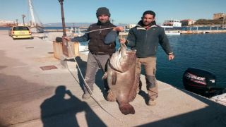 На греческом Сиросе два брата поймали рекордного окуня (видео)