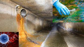 Салоники: в канализации высокий процент РНК коронавируса