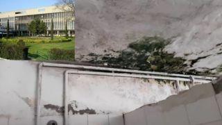 Шок: потолки в Университетском кампусе Салоник гниют от плесени