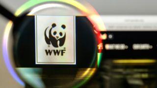 Руководство WWF призывают премьер-министра Греции свернуть нефтегазовые операции