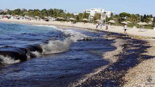 Власти Афин:Пляжи Саронического залива «безопасны»