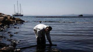 """Получи компенсацию за """"загрязненное мазутом море"""""""