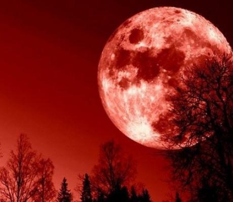 """Взойдет """"Кровавая Луна""""..."""