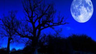 «Грустная или голубая Луна»: в чем особенность грядущего полнолуния