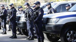 В Греции задержаны 17 граждан Грузии за совершение почти ста преступлений