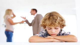 Законопроект о совместной опеке над детьми