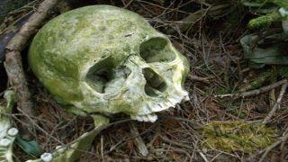 Эвия: Найдены останки неизвестной