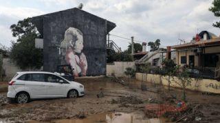 Трагедия на Эвии унесла жизни 8 человек
