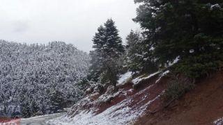 Зима на пороге: первый снег выпал в Греции