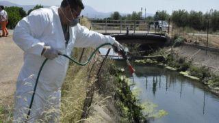 В Аттике начали борьбу с комарами