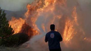В Греции бушуют лесные пожары