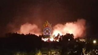 Лесной пожар в пригороде Афин- под контролем