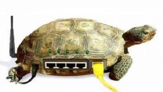 Черепаший интернет: мировой рейтинг средней реальной скорости