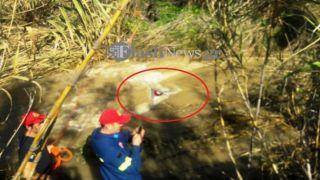 Тела пропавших без вести четырех найдены в их машине на Крите