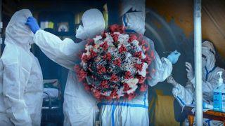 Коронавирус: 2186  новых случаев, 613 интубированных, 89 смертей