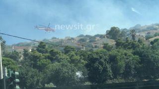 Пожар в Вари подбирается к детскому лагерю