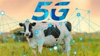 Сеть 5G поднимет сельское хозяйство Греции