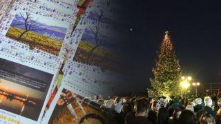 Рождественская елка надежды и памяти загорелась в Мати