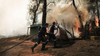 Около 2800 гектаров лесных угодий на Эвии, превратились в пепел