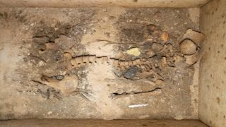Археологическое открытие в Греции: найдена нетронутая гробница знатной дамы