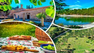 Пять зеленых оазисов для пикника в Аттике