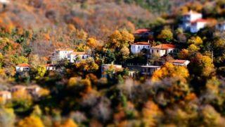 Греческая осень: 8 вещей и фактов